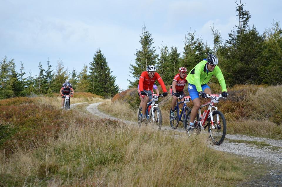 Vedligeholdelse af mountainbike