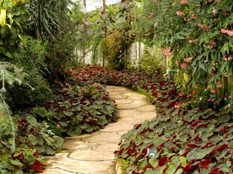 Brug plantesten og håndtér niveauforskelle i haven