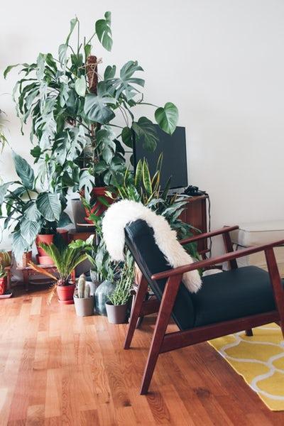 Løft din boligindretning til et nyt niveau